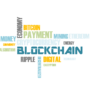 What are the blockchain transaction fees?